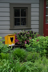 I picked up this charming owl box at the same Leland shop.  The petunias are enjoying the slow spring.