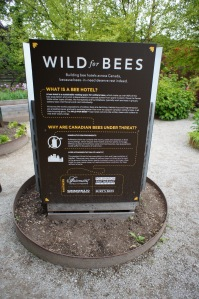 Information about bees at the Toronto Botanical Gardens, the smallest botanical garden in North America at just 5 acres.
