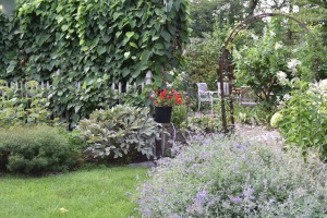 Looking west and into the entrance to the Secret Garden is another border with Walker's Low catmint.